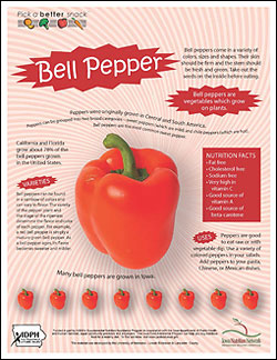 Bell Pepper Fact Sheet